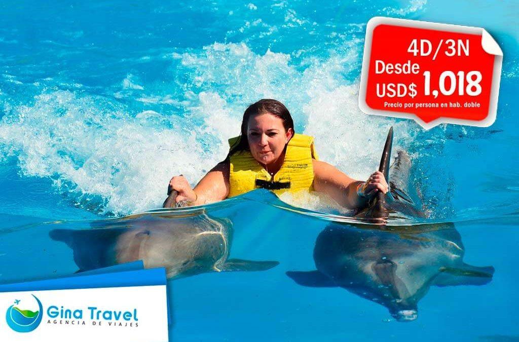 paquetes internacionales a isla margarita delfines